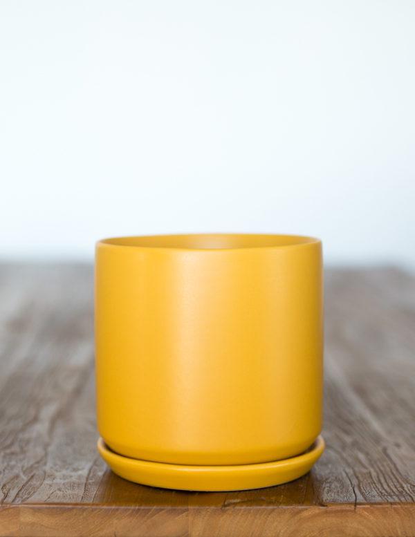 Medium Mustard Pot